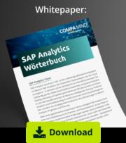 Whitepaper-compamindSAP Analytics Wörterbuch