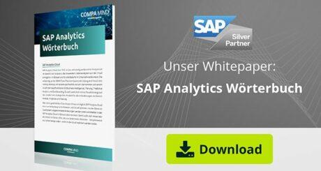 Überblick der Begriffserklärungen im SAP Analytics Umfeld.